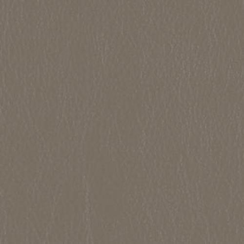Tier 2 Caressa Vinyl - Aluminum