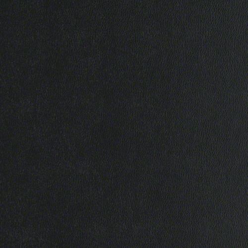 Tier 2 Rally Vinyl - Black