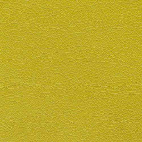 Tier 3 Canter Vinyl - Kiwi Green