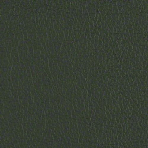 Tier 2 Cassidy Vinyl - Evergreen