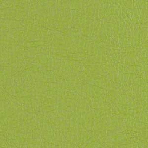 Tier 2 Cassidy Vinyl - Lime