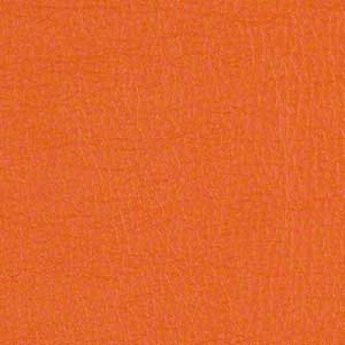 Tier 2 Cassidy Vinyl - Pumpkin